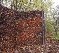 Ogrodzenie gabionowe wypełnione jesiennymi liśćmi