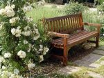 Róże z kalendarza ogrodnika