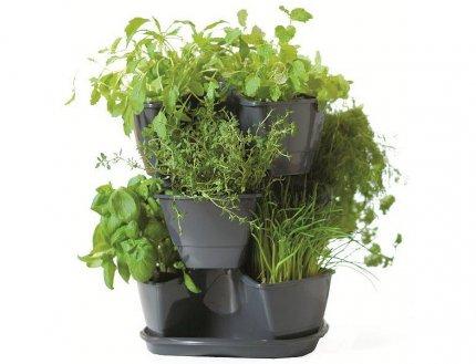 Donica plastikowa na zioła